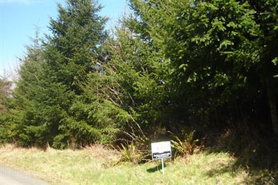 Residential Lots & Land For Sale: 8030 Wapiti Lane SE