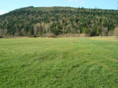 Bellingham WA Residential Lots & Land Sold: $125,000