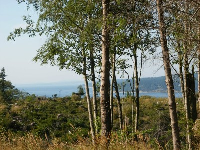 Langley Residential Lots & Land Sold: Water View Dr