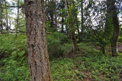 Bellingham WA Residential Lots & Land For Sale: $95,000