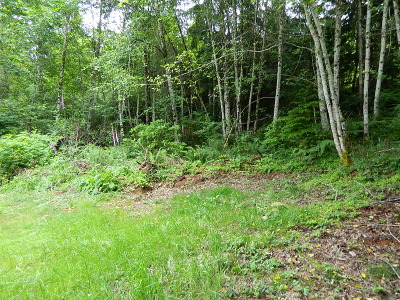 Residential Lots & Land For Sale: 211 N Hamma Ridge Dr
