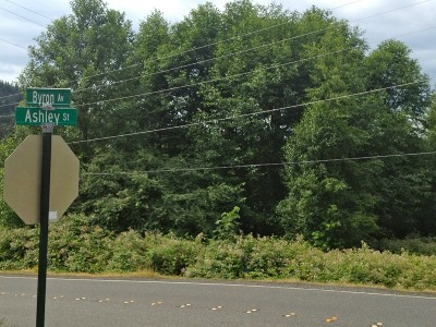 Bellingham Residential Lots & Land Sold: 126 Ashley Ave