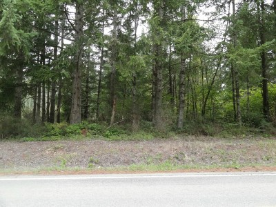Residential Lots & Land For Sale: 2179 Lake Blvd