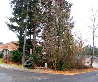 Bellingham Residential Lots & Land Sold: 104 47th St