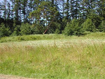 Oak Harbor Residential Lots & Land Sold: 1115 Viewpoint Dr