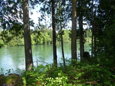 Skagit County Residential Lots & Land For Sale: Eagle View Ct