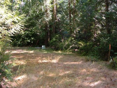 Residential Lots & Land For Sale: 117 E Liberty Rd