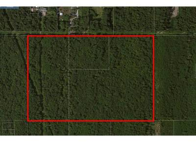 Bellingham Residential Lots & Land Sold: Roland St