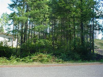Mason County Residential Lots & Land For Sale: 170 E Dalkeith Rd
