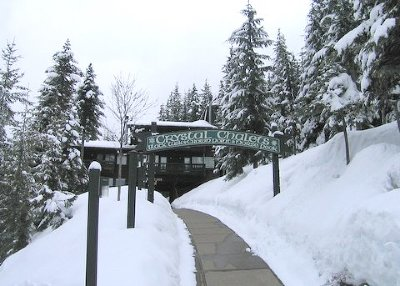 Condo/Townhouse Sold: 33000 Crystal Mountain Blvd E #502