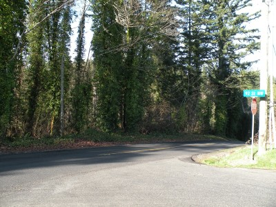Gig Harbor WA Residential Lots & Land Pending Feasibility: $110,000