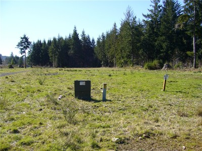 Forks Residential Lots & Land For Sale: 8 Sawyer Wy