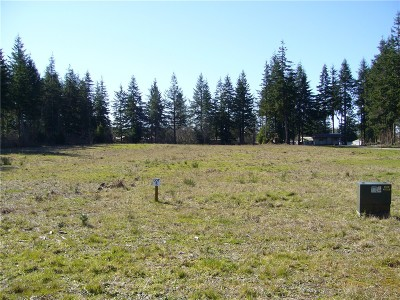 Forks Residential Lots & Land For Sale: 5 Big Pine Wy
