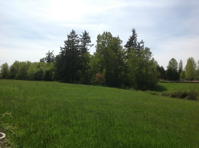 Residential Lots & Land For Sale: 945 E Bakerview Rd