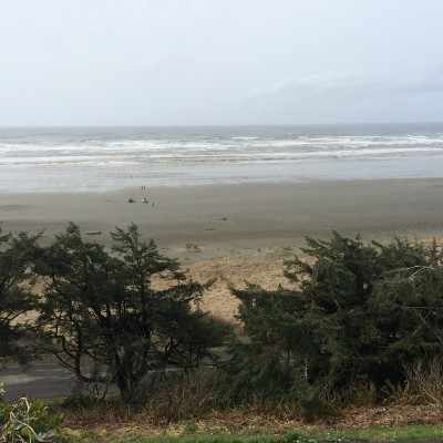 Grays Harbor County Residential Lots & Land For Sale: 47xx Sr 109