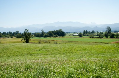 Sumas Residential Lots & Land For Sale: Swanson Rd