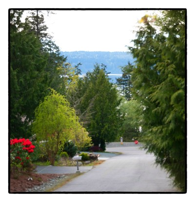 Anacortes, La Conner Residential Lots & Land For Sale: 784 Lillooet Ct