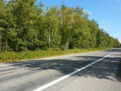 Custer Residential Lots & Land For Sale: 3220 Birch Bay Lynden Road