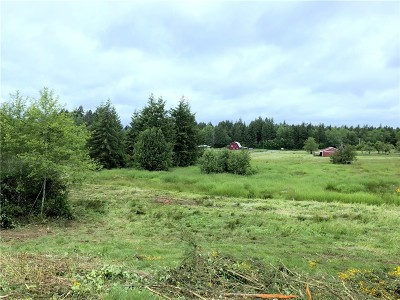Residential Lots & Land For Sale: 4030 SW 150th Ave