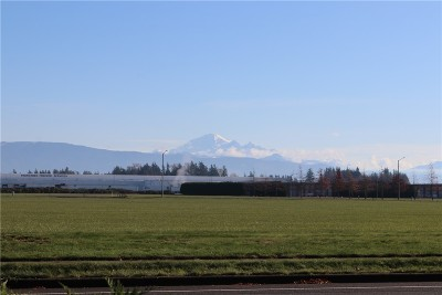 Lynden Residential Lots & Land For Sale: 603 Curt Maberry Dr