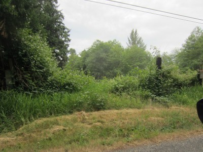 Ferndale Residential Lots & Land For Sale: Kass Rd