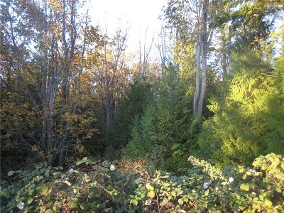 Residential Lots & Land For Sale: 8 41st St