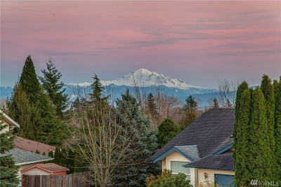 Ferndale Single Family Home Sold: 2431 Pine Place