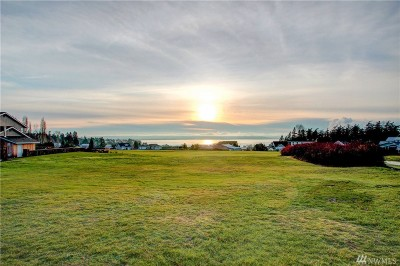 Residential Lots & Land Sold: Padilla Bay Lane