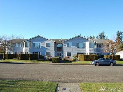 Lynden Condo/Townhouse Sold: 105 Fairside Dr #2B
