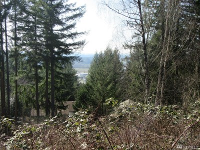 Lewis County Residential Lots & Land For Sale: SE Summit Rd