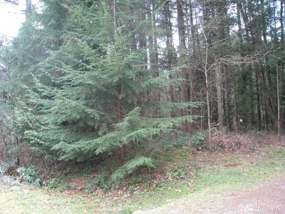 Maple Falls WA Residential Lots & Land For Sale: $23,900