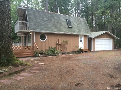 Mason County Single Family Home For Sale: 31 N Glenwood Dr