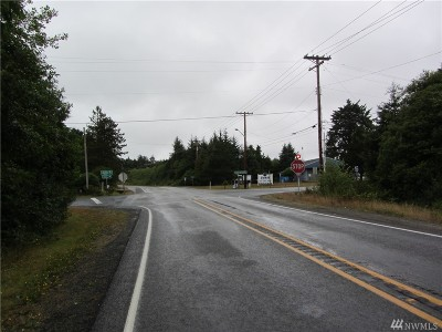 Grays Harbor County Residential Lots & Land For Sale: 4472 Sr 109