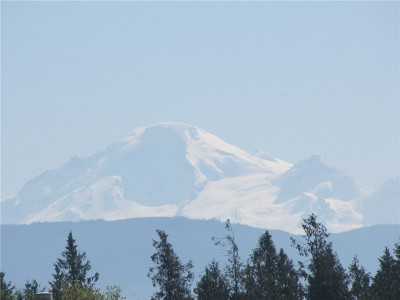 Lynden Residential Lots & Land For Sale: 8683 Benson Rd