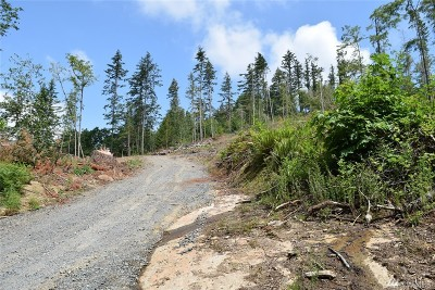Everson Residential Lots & Land For Sale: 8400 North Pass Rd N
