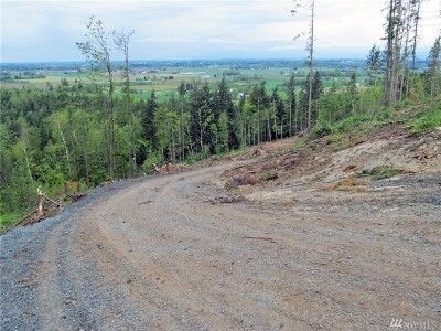 Nooksack Residential Lots & Land For Sale: 8400 North Pass Rd S