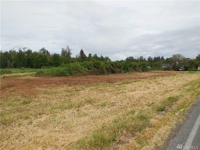 Whatcom County Residential Lots & Land For Sale: 2300 Willeys Lake Rd