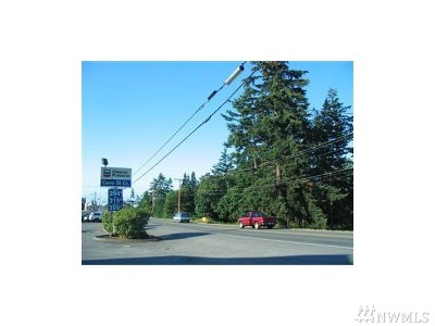 Residential Lots & Land For Sale: Goldie Road
