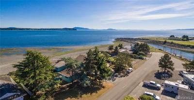 Blaine Single Family Home Sold: 5569 Haida Wy