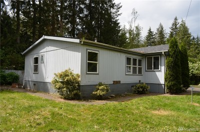 Maple Falls Single Family Home Sold: 6247 Chestnut Dr