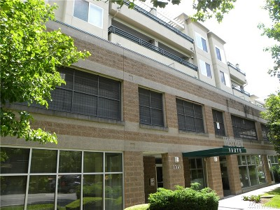 Condo/Townhouse Sold: 8760 Greenwood Ave N #503