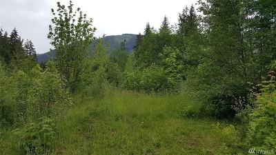 Maple Falls Residential Lots & Land For Sale: 8429 Golden Valley Dr