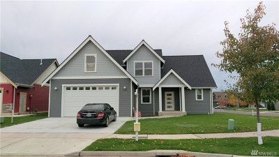 Lynden Single Family Home For Sale: 2153 Fescue St