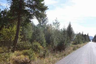 Bonner County, Pend Oreille County Residential Lots & Land For Sale: Southshore Diamond Lake