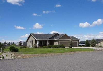 Nine Mile Falls WA Single Family Home Sold: $250,000