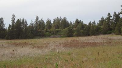 Nine Mile Falls WA Residential Lots & Land Sold: $75,000