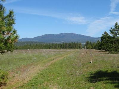 Chattaroy WA Residential Lots & Land For Sale: $84,000