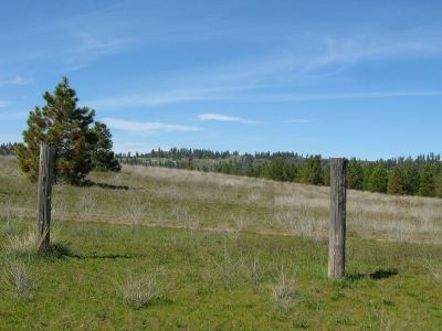 Chattaroy WA Residential Lots & Land Bom: $125,000