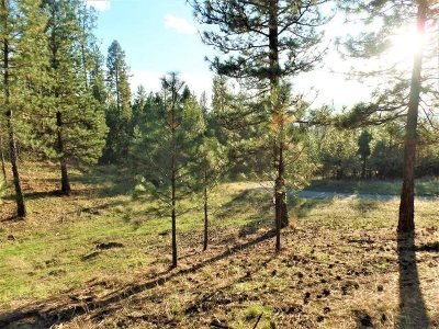 Kettle Falls Residential Lots & Land For Sale: Lot 73 Sherman View Way