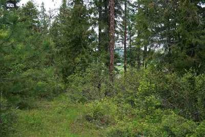 Valley Residential Lots & Land For Sale: Waitts Lake